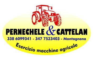 Pernechele e Cattelan
